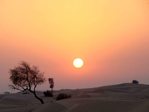 Sunset in the Desert | The Hungry Traveler Interview with Hannah Casey: An American Expat in Dubai  | The Hungry Traveler