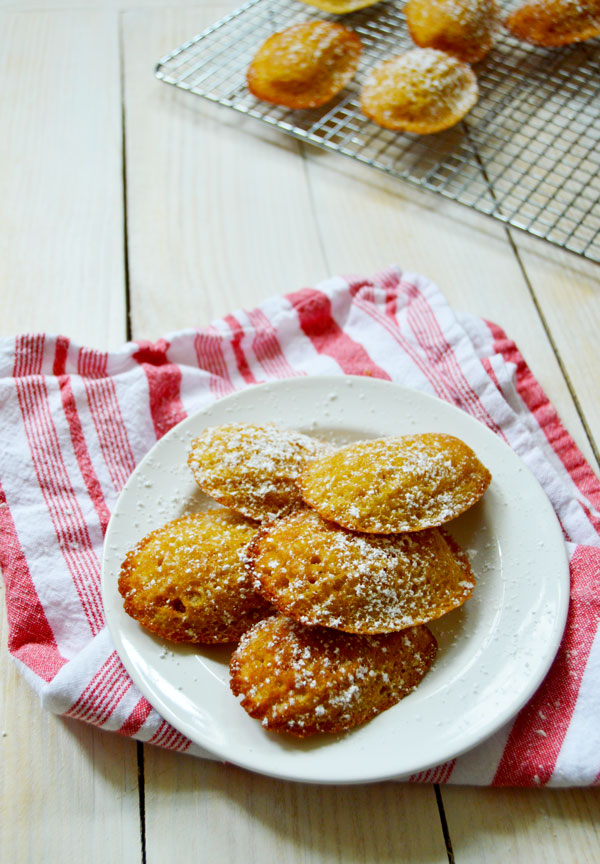 French Madeleines - the classic French tea cake with brown butter, lemon zest, vanilla, and a touch of honey. | www.thehungrytravelerblog.com