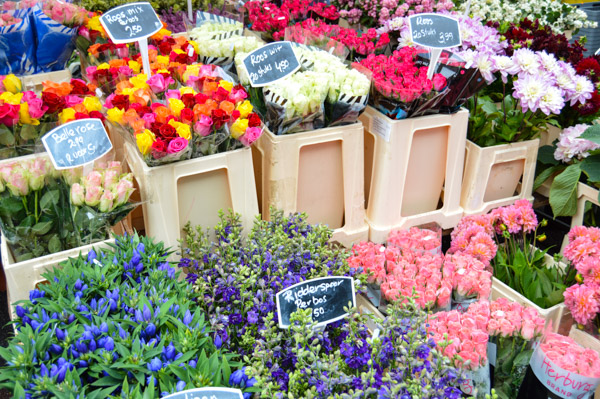 Amsterdam Edited Blog Photos-12-2
