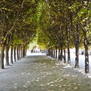 Europe Travel Journal – Paris (Part 1)