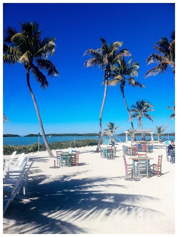 Morada Bay Beach Cafe | Where to Eat in Islamorada